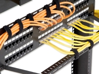 Patch panels with organized cables